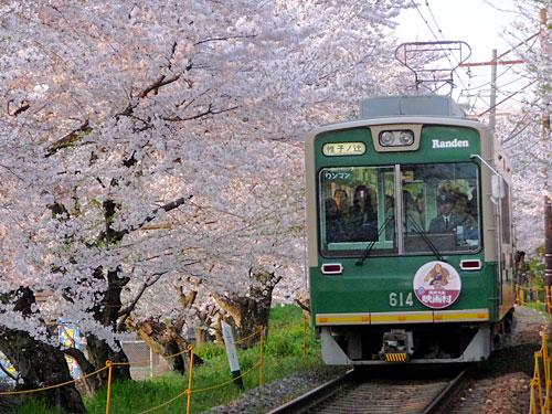 090408_嵐電・桜のトンネル