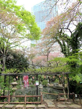 140409_愛宕神社
