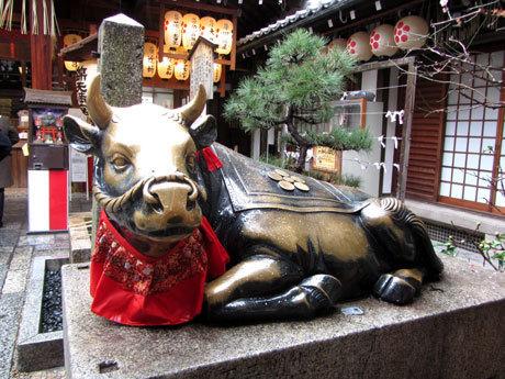 200222_錦天満宮・撫で牛