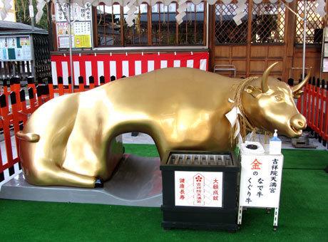 201211_吉祥院天満宮・金のなで牛・くぐり牛