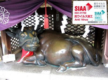210122_露天神社(お初天神)・撫で牛